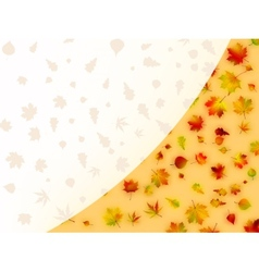 Colorful autumn leaves card EPS 8 vector image vector image