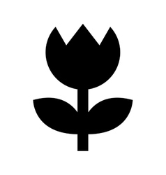 flower settings camera isolated icon design vector image