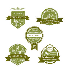 Olive product badge set of oil bottle label design vector