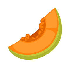 Slice of fresh melon vector