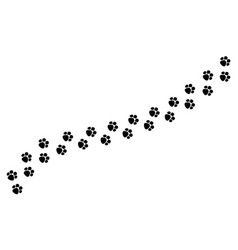 tracks dog or cat paws isolated vector image