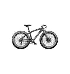 fat bike vector image vector image