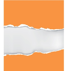 Orange ripped paper vector