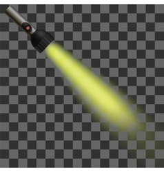 Yellow Light of Torch vector image vector image