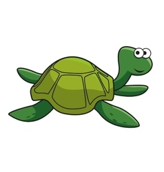 Cartoon smiling green turtle character vector
