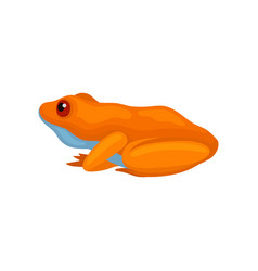 Cute frog isolated on white background side view vector