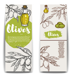 set of olive oil flyers templates vector image