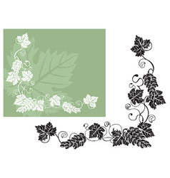 Vine leaves and fruits vector