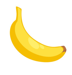 yellow banana in peel vector image