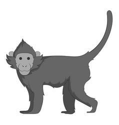 capuchin icon monochrome vector image vector image