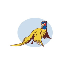 Cartoon Pheasant bird flying vector