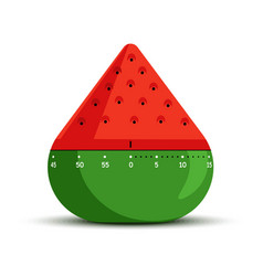timer and time measuring isolated icon watermelon vector image