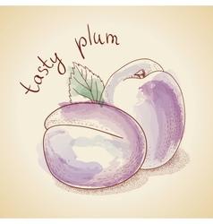 Vintage plum vector