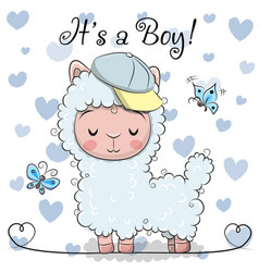 Baby shower greeting card with cute alpaca boy vector