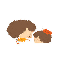 cute hedgehog family sleeping together pair of vector image