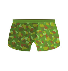 Military underpants gift for men military vector