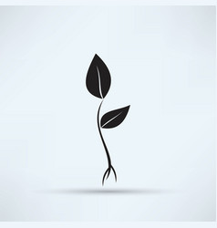 plant sprout icon vector image