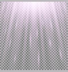 Rays of light vector