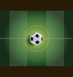 realistic soccer ball or football ball on green vector image