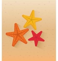 Sea star beach vector