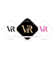 vr initial letter and graphic name vector image