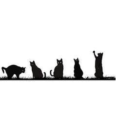 Black cats playing outdoor vector image vector image