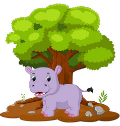cartoon hippos in the jungle vector image