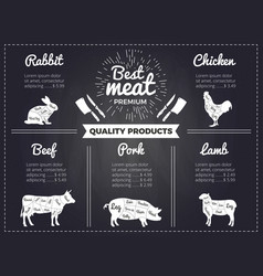 hand drawn of domestic animals vector image