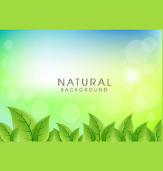 abstract natural background design vector image