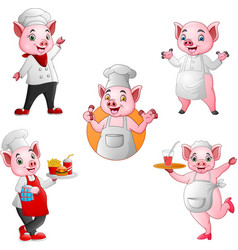 cartoon pigs chef collection set vector image