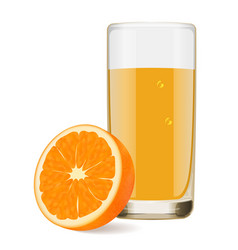 delicious juice from ripe orange vector image