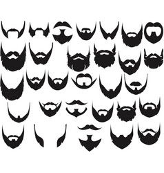 Different style beard set vector