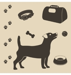 Dog care set of icons vector