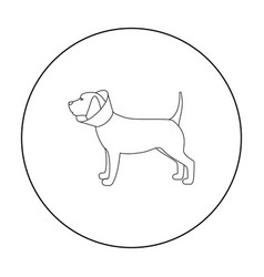 Dog with elizabethan collar icon in outline style vector