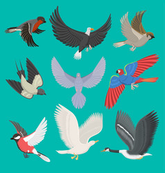 fllying birds cartoon cute vector image