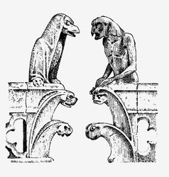 Gargoyle chimera notre-dame de paris engraved vector