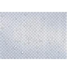 Realistic rain drops on the transparent background vector