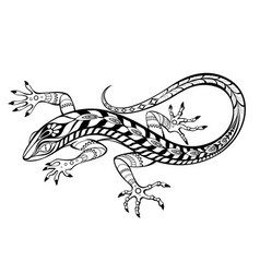 stylized lizard vector image
