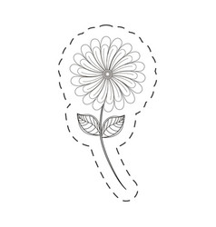 camomile flower decoration cut line vector image