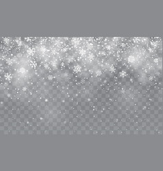 Christmas snow falling snowflakes on transparent vector