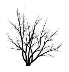 Trees with dead branches vector