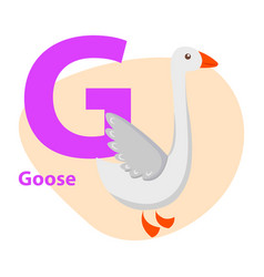 Zoo abc letter with cute goose cartoon vector