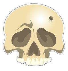 Mask Skull vector image vector image