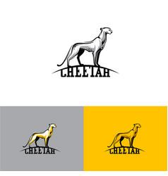 logo cheetah eps10 vector image