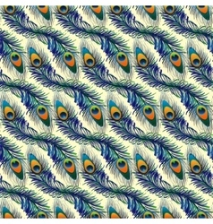 Beautiful pattern with peacock feathers vector