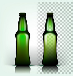 beer bottle alcohol label bar flyer vector image