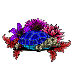 Detailed a generic tortoise vector