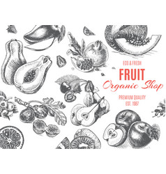 fruit organic shop banner sketch drawn vector image