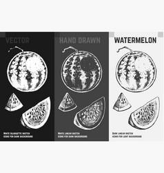 hand drawn watermelon fruits sketch set vector image
