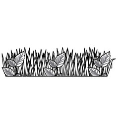 monochrome contour of field grass and plants vector image